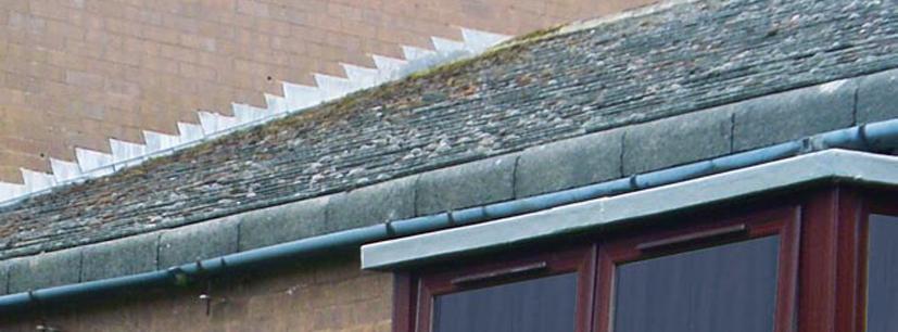 Reparation-et-protection-des-toitures